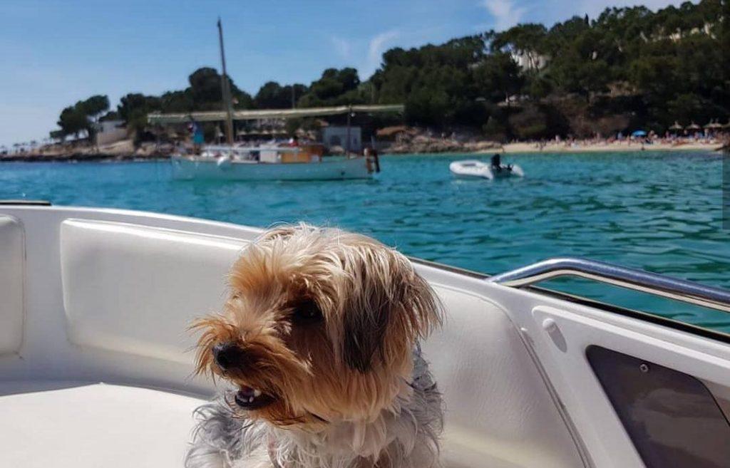 Day-boat-Majorca