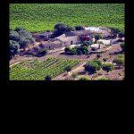 bodegas-mallorca-wineries-concierge-services