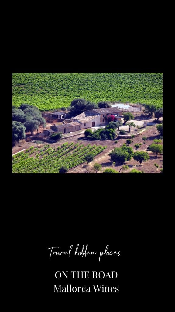 bodegas-mallorca-wineries-concierge-services