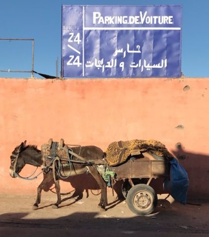 Marrakech_AhiddenPlace_TravelHiddenPlacesbyMM32