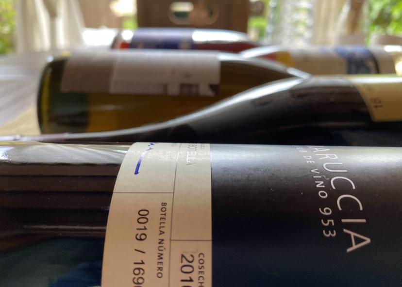 natural-wines-bar.la-sang-delivery-vino-a-domicilio-palma