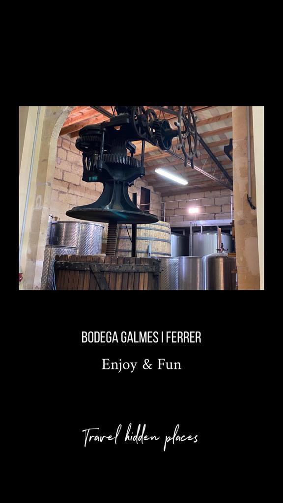 Bodegas-Mallorca-auténticas-Gsalmés-i-ferrer